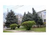 Весна Кубани Фотограф: gadzila  Просмотров: 563 Комментариев: 1