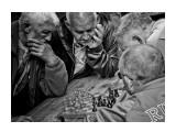 """60х80 Фотограф: © marka фото 60х80, антибликовое стекло, отпечатано автором. Персональная выставка фотографий и промграфики """"живе:)м"""". Сахалинский областной художественный музей.  Просмотров: 386 Комментариев: 0"""