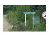 DSC04372 Фотограф: vikirin  Просмотров: 620 Комментариев: 0