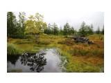 Осенний Сахалин Фотограф: gadzila  Просмотров: 4695 Комментариев: 2