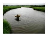 Речка не широка , но глубока,течет торфяная  тихо-тихо... Фотограф: vikirin  Просмотров: 4991 Комментариев: 0