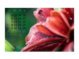 2010.07 / монтаж, коллаж, печать фотоплакатов Фотограф: © marka монтаж, коллаж, печать фотоплакатов  Просмотров: 586 Комментариев: 0