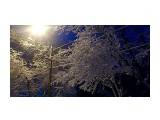 Однажды весной в 6 утра.. пошел снег.. Фотограф: vikirin  Просмотров: 1764 Комментариев: 0