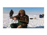 На льду Фотограф: vikirin  Просмотров: 1645 Комментариев: 0
