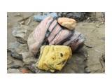 Красивенные каменюки для клумбы... Макарьевка.. Воевода.. Фотограф: vikirin  Просмотров: 1860 Комментариев: 0