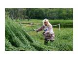DSC02689 Фотограф: vikirin  Просмотров: 163 Комментариев: 0