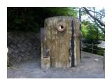 Название: Туалет Фотоальбом: 2017_10_япония Категория: Туризм, путешествия Описание: Не поверите - с музыкой, подмывалкой и т.п.  Просмотров: 44 Комментариев: 0