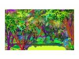 джунгли20032017  Просмотров: 78 Комментариев: 0