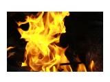 Физика огня... Фотограф: vikirin  Просмотров: 1728 Комментариев: 0