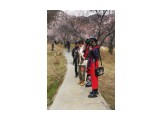 Название: mmexport1553168030934 Фотоальбом: Тибет Категория: Туризм, путешествия  Время съемки/редактирования: 2019:03:21 18:21:15 Фотокамера: HUAWEI - CLT-AL00 Диафрагма: f/2.0 Выдержка: 877000/1000000000 Фокусное расстояние: 3950/1000    Просмотров: 417 Комментариев: 0