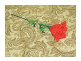 роза возможно изготовление на заказ. Фантазия и возможности альбомом не ограничены :))  Просмотров: 1513 Комментариев: 0