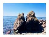 Название: Кошечка :) Фотоальбом: Around Ozerskoe Категория: Море  Время съемки/редактирования: 2018:05:12 12:19:15 Фотокамера: Apple - iPhone 6s Диафрагма: f/2.2 Выдержка: 1/1672 Фокусное расстояние: 83/20    Просмотров: 647 Комментариев: 0