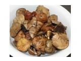 Маслята серые и еловые 1.2кг  Просмотров: 158 Комментариев: 0