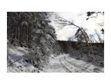 Название: зимнее Фотоальбом: на горном воздухе Категория: Природа  Время съемки/редактирования: 2015:10:30 16:26:31 Фотокамера: Canon - Canon EOS 6D Диафрагма: f/11.0 Выдержка: 1/1600 Фокусное расстояние: 24/1    Просмотров: 1075 Комментариев: 0