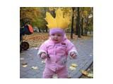 Королева осени :)))  Просмотров: 65 Комментариев: