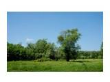 DSC02588 1 Фотограф: vikirin  Просмотров: 65 Комментариев: 0