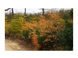 DSC05088 Фотограф: vikirin  Просмотров: 976 Комментариев: 0