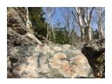 Название: :) Фотоальбом: Pink stones garden Категория: Природа  Время съемки/редактирования: 2018:04:29 12:24:57 Фотокамера: Apple - iPhone 6s Диафрагма: f/2.2 Выдержка: 1/1399 Фокусное расстояние: 83/20    Просмотров: 304 Комментариев: 0