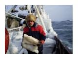 Околка льда   Фотограф: 7388PetVladVik  Просмотров: 6439 Комментариев: 1