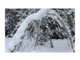 Зима на перевале.. Фотограф: vikirin  Просмотров: 1161 Комментариев: 0