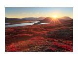 Название: Природа России. Фотоальбом: Природа Категория: Природа  Просмотров: 44 Комментариев: 0