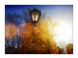 Название: Холодное солнце. Фотоальбом: Красивое рядом. Категория: Природа Фотограф: Карпов  Время съемки/редактирования: 2020:11:03 15:46:29 Фотокамера: SONY - DSC-P41 Диафрагма: f/5.6 Выдержка: 10/10000 Фокусное расстояние: 50/10   Описание: Осень.  Просмотров: 384 Комментариев: 0