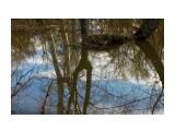 Весеннее отражение... Фотограф: vikirin  Просмотров: 1658 Комментариев: 0
