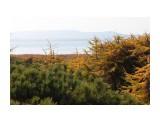 Залив Лунский Фотограф: vikirin  Просмотров: 1332 Комментариев: 0
