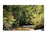 Северные речушки Фотограф: vikirin  Просмотров: 1973 Комментариев: 0