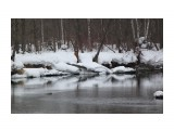 Апрельская верба Фотограф: vikirin  Просмотров: 1675 Комментариев: 0