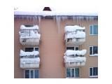 В снегу... Фотограф: vikirin  Просмотров: 2871 Комментариев: 0