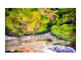 Баранский булькает и пахнит Фотограф: ©  marka /печать больших фотографий,создание слайд-шоу на DVD/  Просмотров: 802 Комментариев: 2