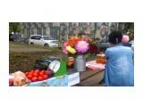 DSC_0732 Фотограф: vikirin  Просмотров: 457 Комментариев: 2