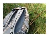 Ящерица на моем рюкзаке  Просмотров: 288 Комментариев: 0