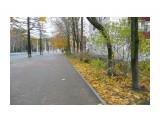 Название: тротуар Фотоальбом: Осень Категория: Пейзаж  Время съемки/редактирования: 2012:11:04 13:46:39 Фотокамера: Panasonic - DMC-TZ3 Диафрагма: f/3.3 Выдержка: 10/800 Фокусное расстояние: 46/10    Просмотров: 350 Комментариев: 0