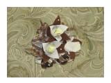 кусочек тортика 2 16 шоколадок Roshen темный и темный с орехами 3 конфеты Nougat Roshen нуга  возможно изготовление на заказ. Фантазия и возможности альбомом не ограничены :))  Просмотров: 1161 Комментариев: 0
