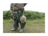 Охотник с добычей Птичку жалко...  Просмотров: 791 Комментариев: 0