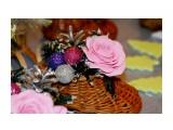 Название: IMG_9036 Фотоальбом: Новогодняя выставка 14.12.2013 Категория: Хобби  Просмотров: 454 Комментариев: 0