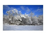 Зима Кубани Фотограф: gadzila  Просмотров: 316 Комментариев: 0