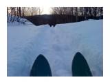 Лыжня.. Фотограф: vikirin  Просмотров: 3558 Комментариев: 0