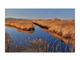 Пейзаж  Река Долгая   Просмотров: 103  Комментариев: 0