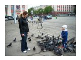 Голуби на площади-тема вечная Фотограф: vikirin  Просмотров: 2423 Комментариев: 0