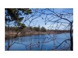 Название: Красота! Фотоальбом: Разное Категория: Природа Фотограф: Tsygankov Yuriy  Время съемки/редактирования: 2021:04:25 17:22:01 Фотокамера: Canon - Canon EOS 6D Диафрагма: f/6.3 Выдержка: 1/640 Фокусное расстояние: 40/1    Просмотров: 277 Комментариев: 0