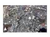 Скала.. стена.. было дно моря..  Фотограф: vikirin  Просмотров: 1218 Комментариев: 0