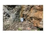 Вода течет прямо из скалы.. очень чистая.. Фотограф: vikirin  Просмотров: 1778 Комментариев: 0