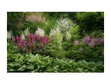 Владивосток. Ботанический сад Фотограф: vikirin  Просмотров: 508 Комментариев: 0