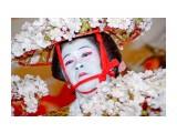 2008.11.28  Фотограф: marka  Просмотров: 1208 Комментариев: 0