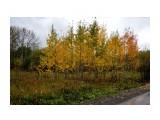 DSC04804 Фотограф: vikirin  Просмотров: 485 Комментариев: 0