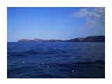 Название: Редкие солнечные дни  (о.Шикотан)    Фотоальбом: Остров Шикотан Категория: Пейзаж Фотограф: 7388PetVladVik  Время съемки/редактирования: 2011:12:22 17:38:45 Фотокамера: OLYMPUS IMAGING CORP.   - FE170,X760 Диафрагма: f/4.6 Выдержка: 1/700 Фокусное расстояние: 630/100    Просмотров: 5111 Комментариев: 0