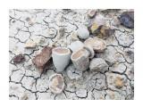 Название: C4CE105B-19EA-4939-9314-0ABE67A03FEE Фотоальбом: Грязевой вулкан,станция Перевал Категория: Природа  Время съемки/редактирования: 2018:08:25 18:28:59 Фотокамера: Apple - iPhone 6s Диафрагма: f/2.2 Выдержка: 1/324 Фокусное расстояние: 83/20    Просмотров: 689 Комментариев: 0